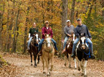 Bear Mountain Riding Stables