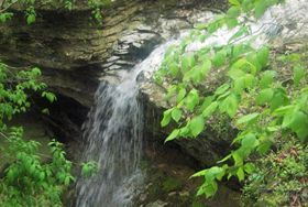 Spring waterfall in Eureka Springs West
